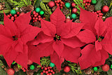 Poinsettia Flower Display