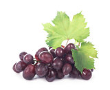 grapes bunch