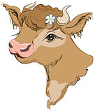Brown cow head with a flower in her hair. Side view