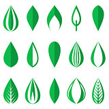 Green simple leaves