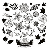 Set of flowers, leaves and insects vector illustration