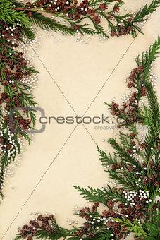 Abstract Cedar Cypress Border
