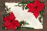 Poinsettia Flowers Border
