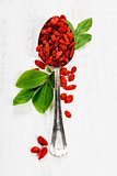 Metal tablespoon of dried goji berries