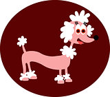 Cartoon Pink Poodle.
