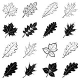Leaves of plants, silhouettes, set
