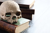 Skull On Books