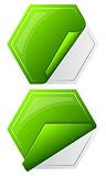 Collection hexagon sticker