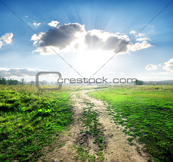 Country road in wild nature