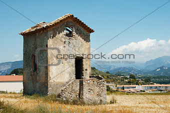 Old house in a wheat field
