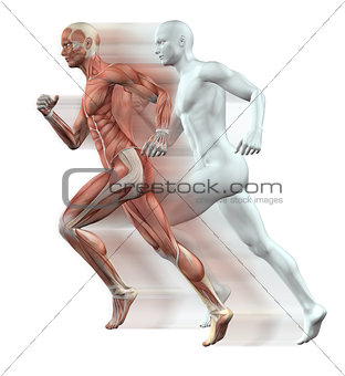 3D male figures running