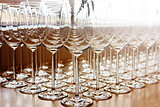 Rows of shiny empty high glasses