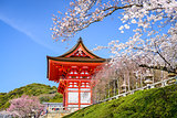 Kyoto Temples in the Spring