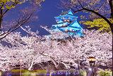 Osaka, Japan Castle