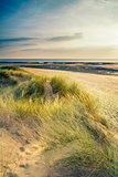 Summer evening landscape view over grassy sand dunes on beach