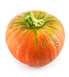 Fresh pumpkin ripe vegetable