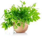 Bunch fresh parsley
