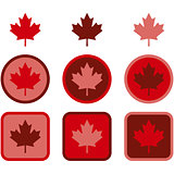 Maple leaf flat design