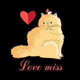 Persian cat in love