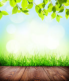 Summer background with floor, grass and bokeh