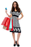Picture of lovely woman with shopping bags and credit card
