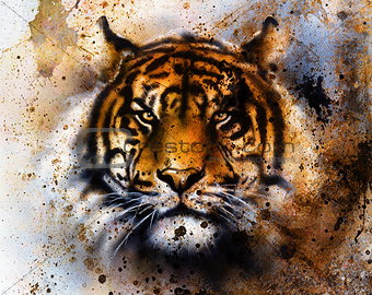 tiger collage on color abstract  background,  rust structure, w