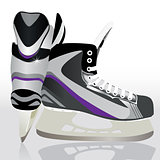 Ice skates - sports equipment