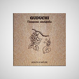 Herbs and Spices Collection - Guduchi