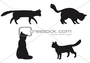 Cats collection - vector silhouette.