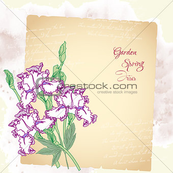 Background with irises