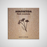 Herbs and Spices Collection - Asafoetida