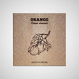 Herbs and Spices Collection - Orange tree