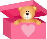 Teddy bear in pink box