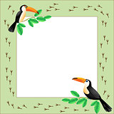 Frame with toucans