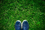 stepping on the grass