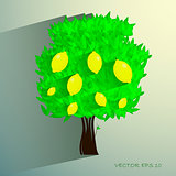 lemon tree isolated on White background. Vector illustration