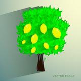 lemon tree isolated on White background. Vector illustration