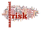 Management risk word cloud with white background