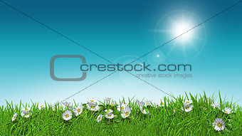 3D daisies in grass sunny sky
