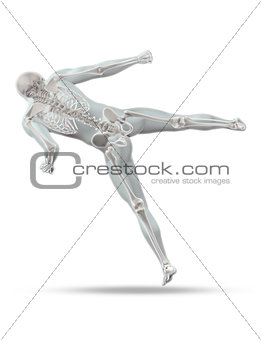 3D male medical figure in kick boxing pose