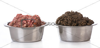 bowl of raw and kibble