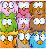funny owl cartoon background