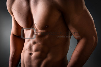 Abdominal and pectoral muscle