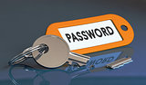 Security Flaw, Vulnerability