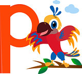 Parrot with the letter p