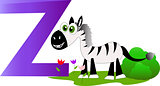 Zebra with the letter z
