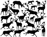 Reindeer or caribou silhouettes