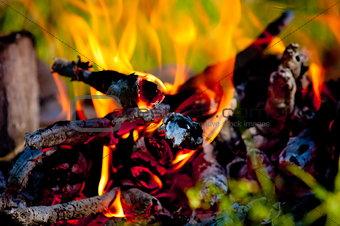 bright coals
