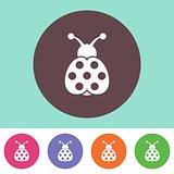 Ladybird icon