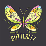 vector logo color of the butterfly patterns